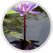 Water Lily - Shaded Round Beach Towel