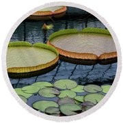 Waterlilies And Platters 2 Round Beach Towel by Byron Varvarigos
