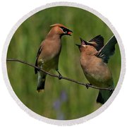 Waxwing Love.. Round Beach Towel