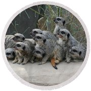 We Are Family Round Beach Towel by Judy Whitton