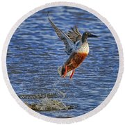 Round Beach Towel featuring the photograph We Have Liftoff by Gary Holmes