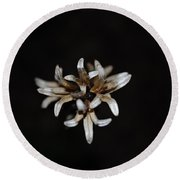 Weed On Black Round Beach Towel by Mim White