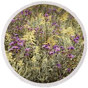 Weeds In Late Summer Round Beach Towel