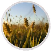 Round Beach Towel featuring the photograph Weeds by Joseph Skompski