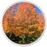 Round Beach Towel featuring the photograph Welcome Autumn by Gordon Elwell