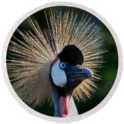 West African Crowned Crane Round Beach Towel
