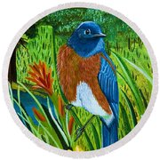Western Bluebird Round Beach Towel