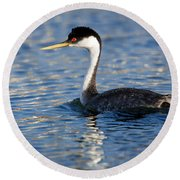 Round Beach Towel featuring the photograph Western Grebe by Jack Bell