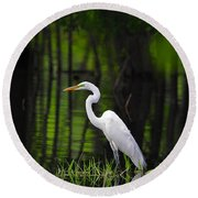 Wetland Wader Round Beach Towel by Al Powell Photography USA