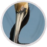 Whachu Lookin At Round Beach Towel by Susan Molnar