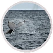 Round Beach Towel featuring the photograph Whale Of A Time by Miroslava Jurcik