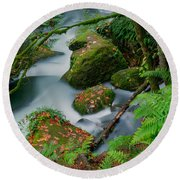 Round Beach Towel featuring the photograph Whatcom Falls 1 by Jacqui Boonstra