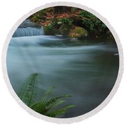 Round Beach Towel featuring the photograph Whatcom Falls Park by Jacqui Boonstra