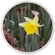 Round Beach Towel featuring the photograph Whats Up Buttercup by Nick Kirby