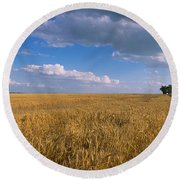 Round Beach Towel featuring the photograph Wheat Crop In A Field, North Dakota, Usa by Panoramic Images