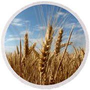 Wheat Field In A Sunny Summer Day Round Beach Towel