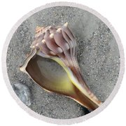 Whelk With Sand Round Beach Towel