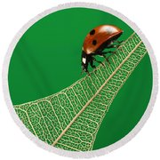 Where Have All The Green Leaves Gone? Round Beach Towel