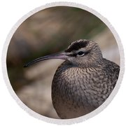 Round Beach Towel featuring the photograph Whimbrel by Bianca Nadeau