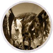 Whimsical Stallions Round Beach Towel