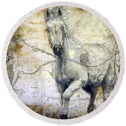 Whipsers Across The Steppe Round Beach Towel