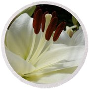 White Asiatic Lily Round Beach Towel