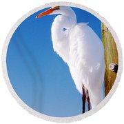 Great White Heron Round Beach Towel by Vizual Studio