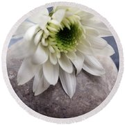 White Blossom On Rocks Round Beach Towel