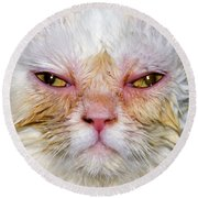 Scary White Cat Round Beach Towel