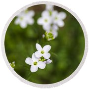 White Cuckoo Flowers Round Beach Towel