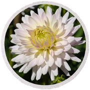 White Dahlia Flower Round Beach Towel