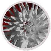 White Dahlia Round Beach Towel