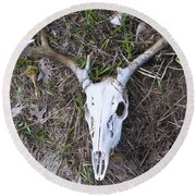 White Deer Skull In Grass Round Beach Towel