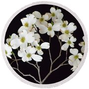 Round Beach Towel featuring the photograph White Dogwood Branch by Jeannie Rhode
