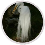 White Egret In The Shadows Round Beach Towel