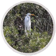 Round Beach Towel featuring the photograph White Egret In The Swamp by Christiane Schulze Art And Photography