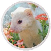 White Ferret Round Beach Towel