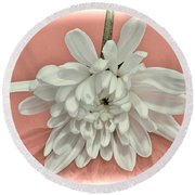 White Flower On Pale Coral Vignette Round Beach Towel