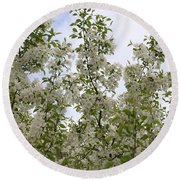 White Flowers On Branches Round Beach Towel