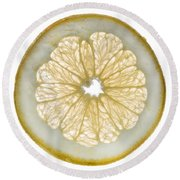White Grapefruit Slice Round Beach Towel by Steve Gadomski