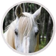 Round Beach Towel featuring the photograph White Horse Close Up by Jocelyn Friis