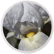 Round Beach Towel featuring the photograph White Iris by Joy Watson