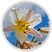 White Lily Flower Against Blue Sky Art Prints Round Beach Towel