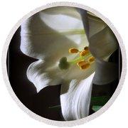White Lily Round Beach Towel by Kay Novy