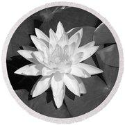 White Lotus 2 Round Beach Towel by Ellen Henneke