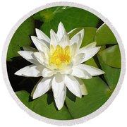 White Lotus 1 Round Beach Towel by Ellen Henneke