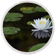 Round Beach Towel featuring the photograph White Lotus Lily Flower And Lily Pad by Glenn Gordon