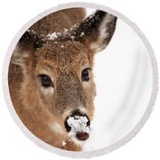 White On The Nose Round Beach Towel