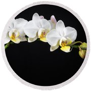 White Orchids Round Beach Towel by Adam Romanowicz