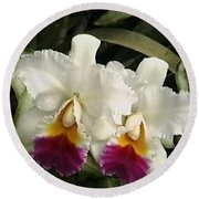 Round Beach Towel featuring the photograph White Orchids by Donna Walsh